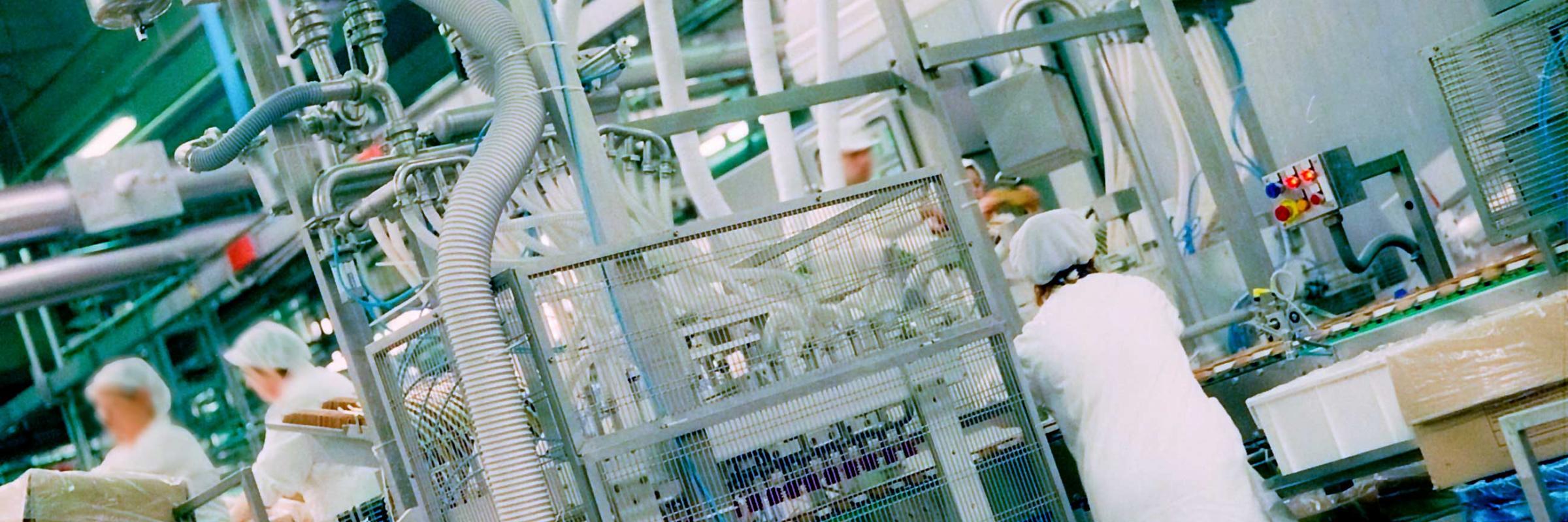 Implementación de prerrequisitos y sistema HACCP en la Industria Alimentaria