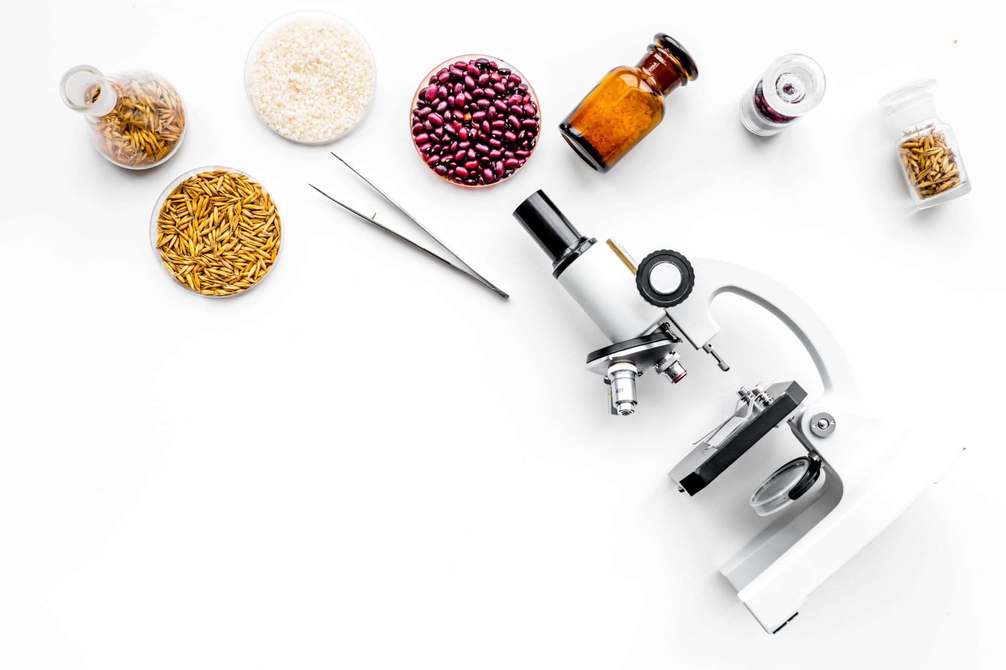 Lípidos: una visión nutricional, tecnológica y alimentaria para la mejora de la salud y la calidad de vida